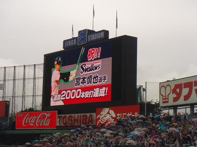 6_2012.jpg
